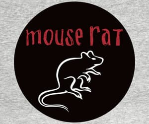 mouse, parks, and rat image