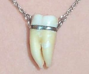 necklace, teeth, and tooth image