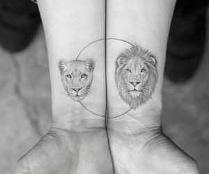 lion, tattoo, and black and white image