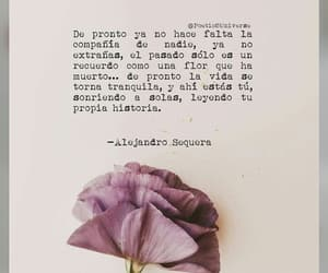 amor, quotes, and poemas image