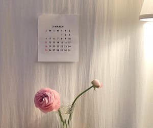 flowers, interior, and minimal image