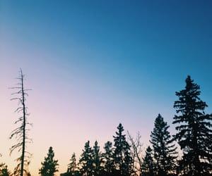 Alberta, green, and blue image