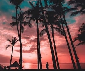 sunset, photography, and summer image