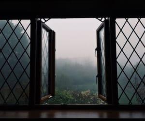 window, nature, and grunge image