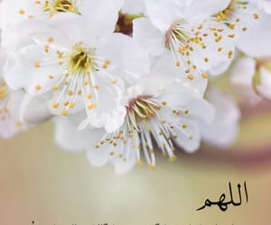 islam, islamic, and ادعيه image