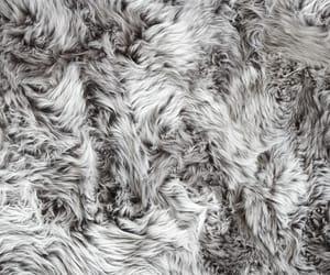 grey and wallpaper image