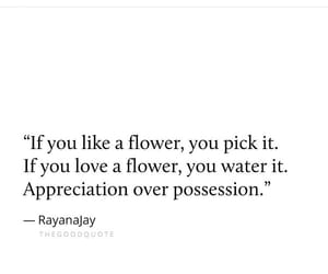 appreciate, boys, and flower image