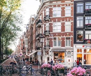 amsterdam, travel, and nature image