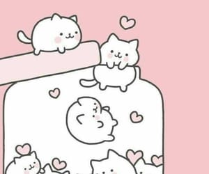 kitties, pink and white, and wallpaper image