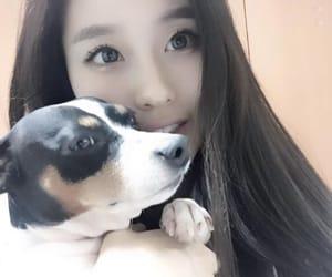 asian, model, and korean image