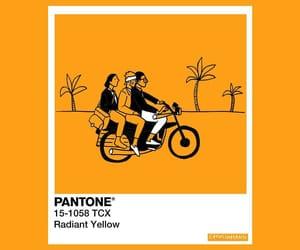 pantone and radiant yellow image