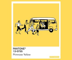 pantone and primrose yellow image