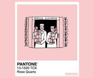 pantone and rose quartz image