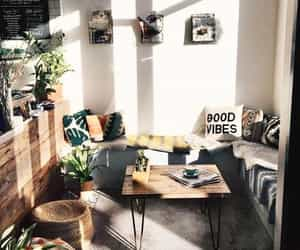 plants, interior, and home image