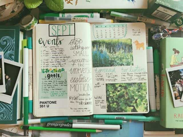 article, journal, and diary image