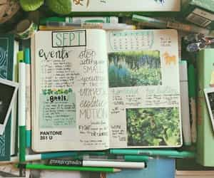 article, green, and journal image