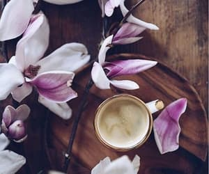 coffee, flower, and lila image