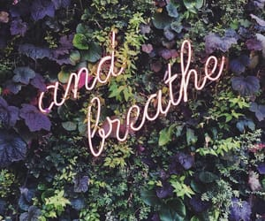 breathe, laura lopes, and flowers image