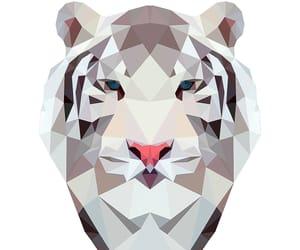 animal, art, and lion image