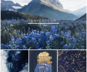 blue, harry potter, and harrypotter image