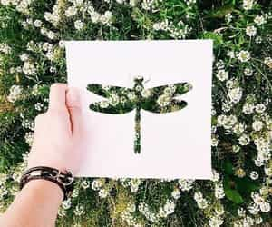art, dragonfly, and nature image
