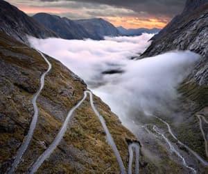 belleza, naturaleza, and niebla image