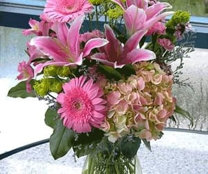 carnations, daisies, and send flowers online image