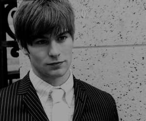 Chace Crawford, gif, and gossip girl image