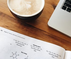 coffee, college, and study image