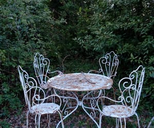 arbre, beautiful, and chair image
