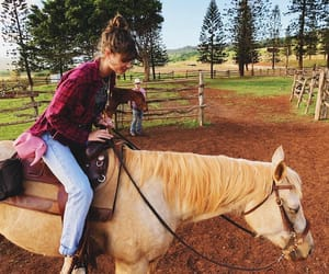 horses, taylor hill, and nature image