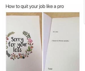 boss, humour, and funny image