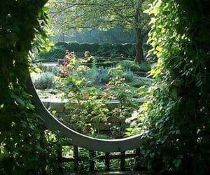 garden, green, and flowers image