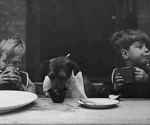 black and white, boys, and dog image
