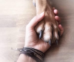 friend, dog, and love image