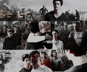 thomas sangster, maze runner, and dylan obrien image