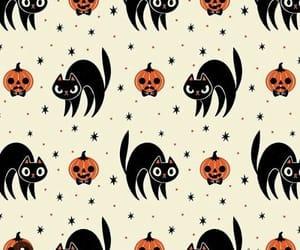 pumpkin, cat, and Halloween image