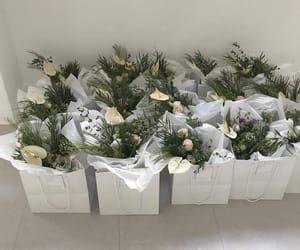 flowers and minimalist image