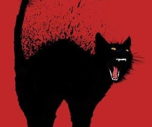 cats, black, and enojado image