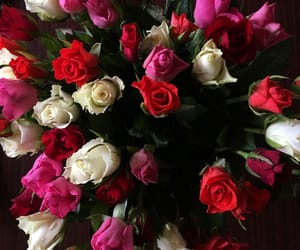 flowers, happiness, and roses image