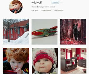 game of thrones, little wolf, and instagram image