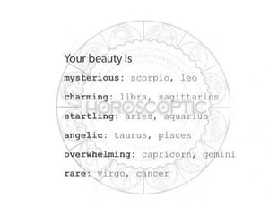 astrology, signs, and zodiac image