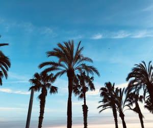 beach, beautiful, and chill image