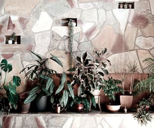 home, house, and plants image