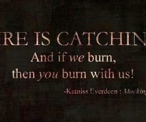the hunger games, catching fire, and 🔥 image