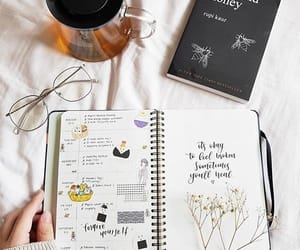 book, books, and milk and honey image