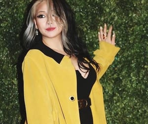 hair, lee chaerin, and lee chaelin image