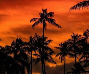 beach, goals, and orange image