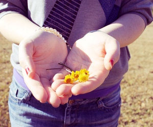hand, handful, and daisies image