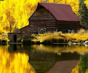 autumn, colorado, and rural image